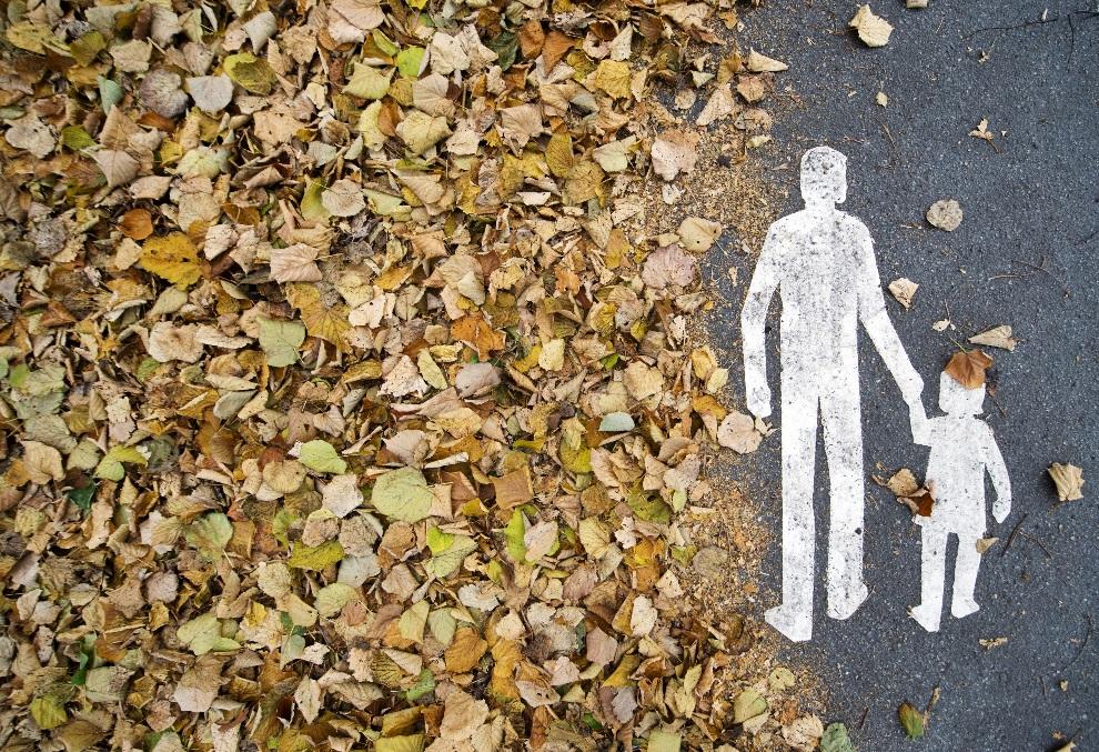 1.SZWECJA, Sztokholm, 29 października 2012: Ścieżka dla pieszych przykryta liśćmi. AFP PHOTO / JONATHAN NACKSTRAND