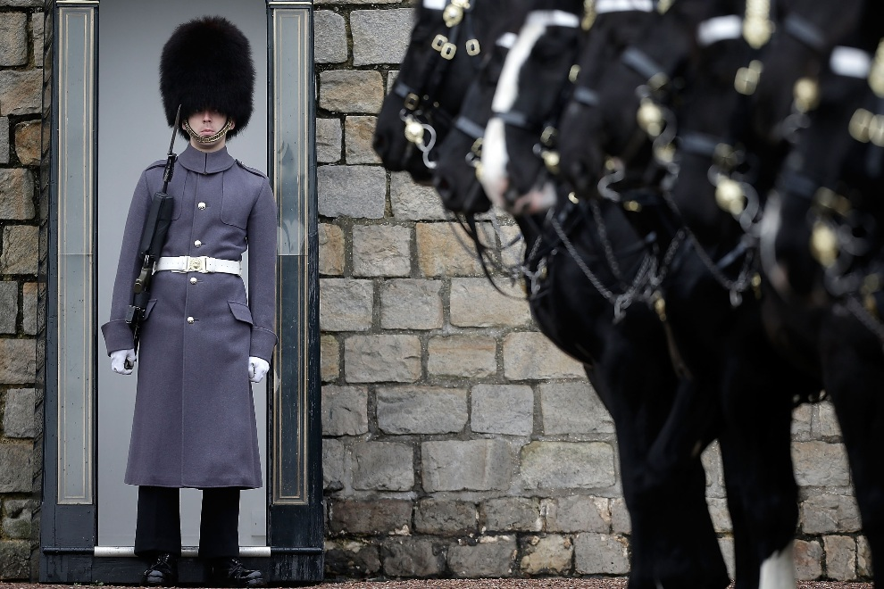 22.WIELKA BRYTANIA, Windsor, 27 listopada 2012: Żołnierz przygląda się koniom ustawionym przed zamkiem Windsor. AFP PHOTO/POOL/ Matthew Lloyd