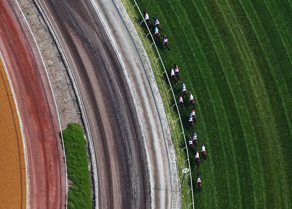 23.AUSTRALIA, Melbourne, 3 listopada 2012: Gonitwa podczas Victorian Derby Day na torze Flemington. (Foto: Ryan Pierse/Getty Images)