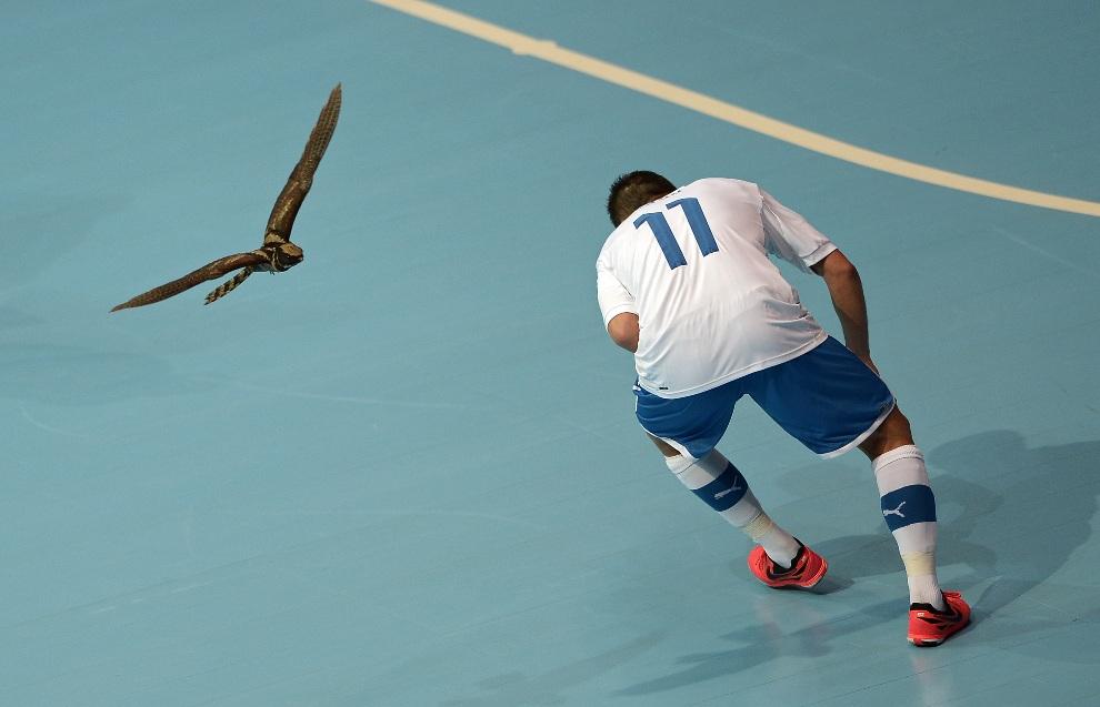 29.TAJLANDIA, Bangkok, 8 listopada 2012: Włoch Saad Assis chroni się przed ptakiem, który przerwał mecz halowej piłki nożnej. AFP PHOTO/ NICOLAS ASFOURI