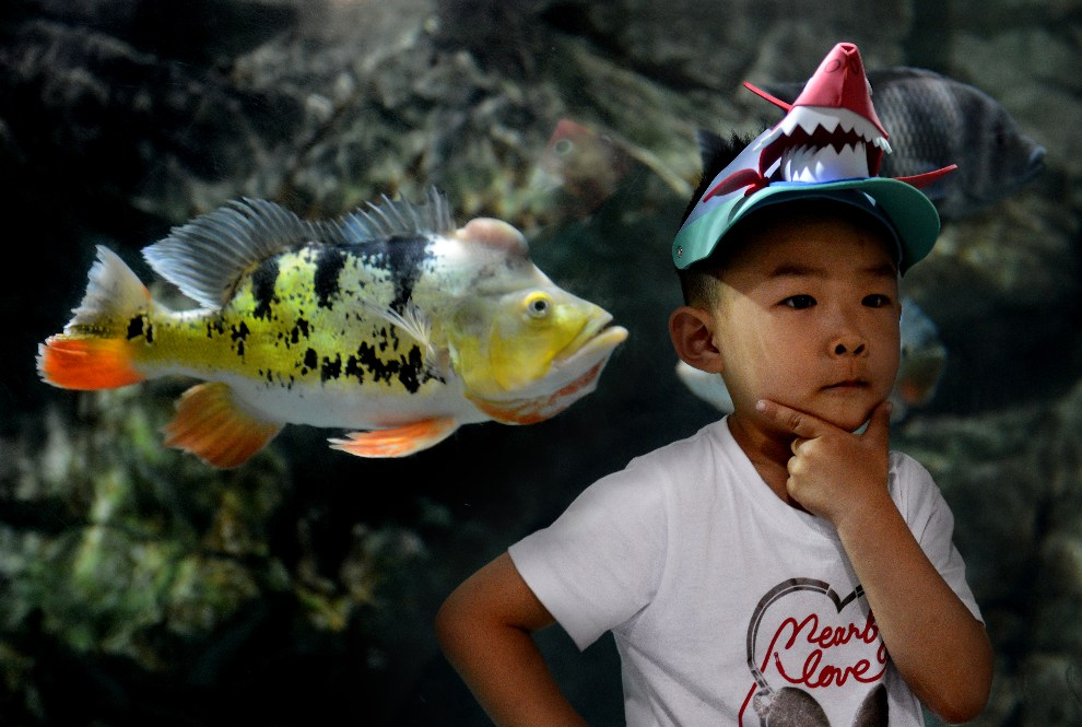 26.CHINY, Pekin, 30 maja 2012: Chłopiec pozujący do zdjęcia podczas wizyty w miejskim akwarium. AFP PHOTO/Mark RALSTON