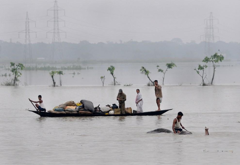 30.INDIE, Pobitora, 28 czerwca 2012: Ludzie wraz z dobytkiem na łodzi i mężczyzna na słoniu przemieszczają się na nie zalane tereny. AFP PHOTO/Biju BORO