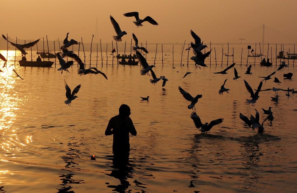 9. INDIE, Allahabad, 24 stycznia 2013: Mężczyzna w trakcie rytualnej kąpieli w jednym z dopływów Gangesu. AFP PHOTO/ Sanjay KANOJIA