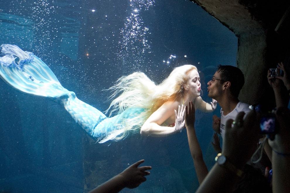 2.BRAZYLIA, Sao Paulo, 10 lutego 2013: Mirella Ferraz występująca w miejskim akwarium w Sao Paulo. AFP PHOTO / Nelson ALMEIDA