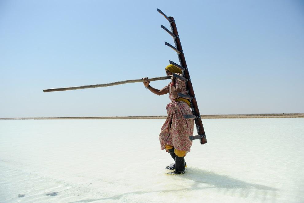 14.INDIE, Santalpur, 7 marca 2013: Kobieta pracująca przy zbieraniu soli. AFP PHOTO / Sam PANTHAKY