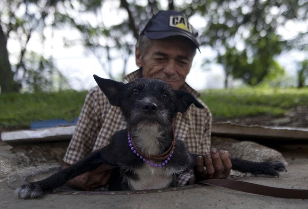 11.KOLLUMBIA, Medellín, 4 grudnia 2012: Miguel Restrepo pomaga swojemu psu wyjść z kanału gidze razem mieszkają. AFP PHOTO/Raul ARBOLEDA