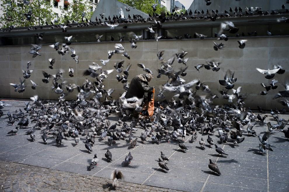 21.FRANCJA, Paryż, 8 sierpnia 2012: Bezdomny karmiący gołębie. AFP PHOTO / FRED DUFOUR