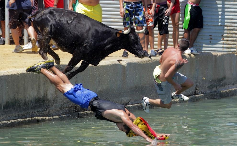 """23.HISZPANIA, Denia, 8 lipca 2013: Uczestnicy biegu z bykami """"Bous a la mar"""" uciekają przed bykiem. AFP FOTO: / JOSE JORDAN"""