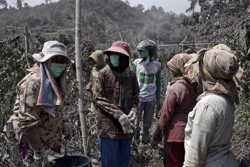 10.INDONEZJA, Tiga Pancur, 6 stycznia 2014: Mieszkańcy pobliskiej wsi przyglądają się erupcji wulkanu. (Foto: Ulet Ifansasti/Getty Images)