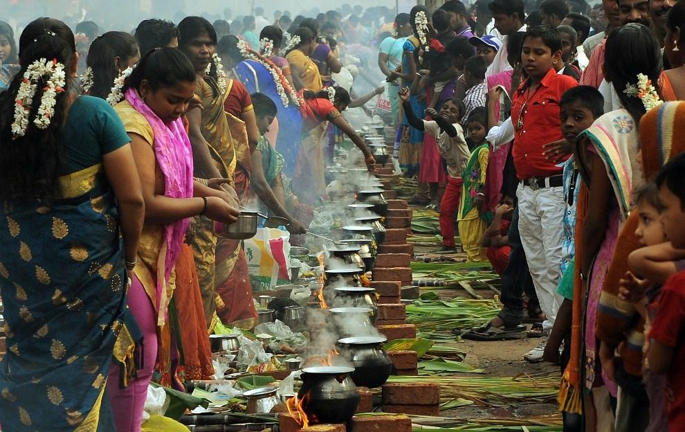 12.INDIE, Mumbaj, 14 stycznia 2014: Wyznawcy Hinduizmu przygotowują tradycyjne potrawy z okazji święta Pongal. AFP PHOTO/ PUNIT PARANJPE
