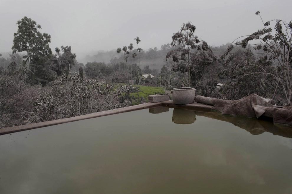 13.INDONEZJA, Tiga Pancur, 6 stycznia 2014: Wioska przykryta pyłem wulkanicznym. (Foto: Ulet Ifansasti/Getty Images)
