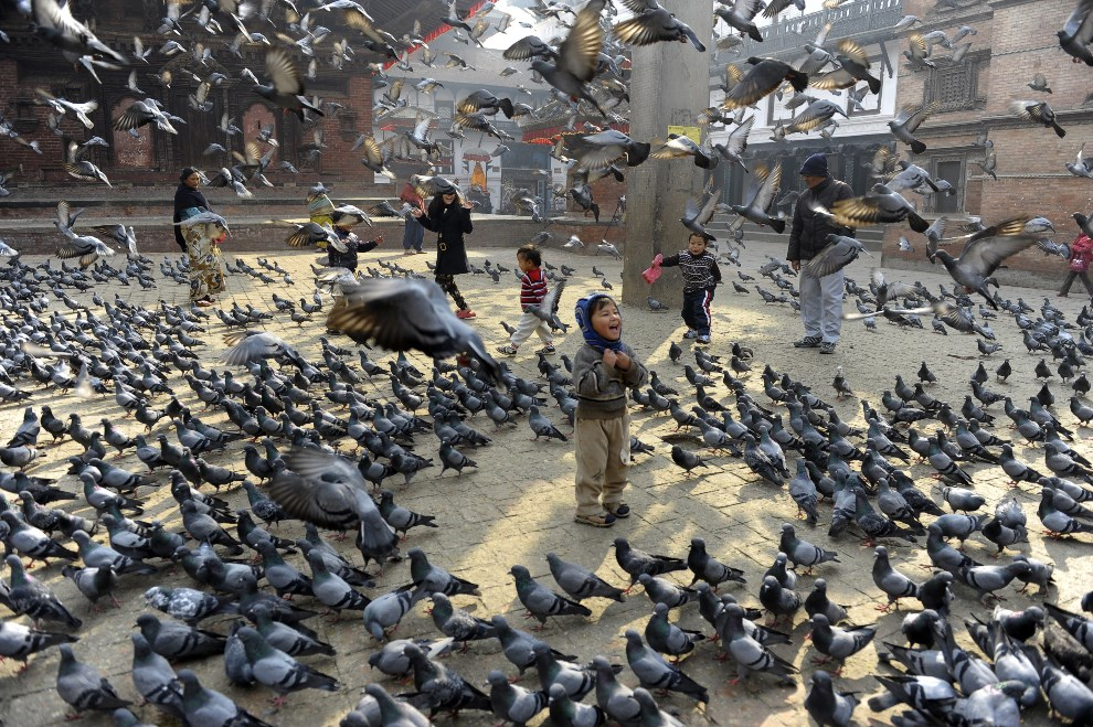 24.NEPAL, Kathmandu, 9 stycznia 2014: Dzieci karmiące gołębie na placu Durbar. AFP PHOTO/Prakash MATHEMA
