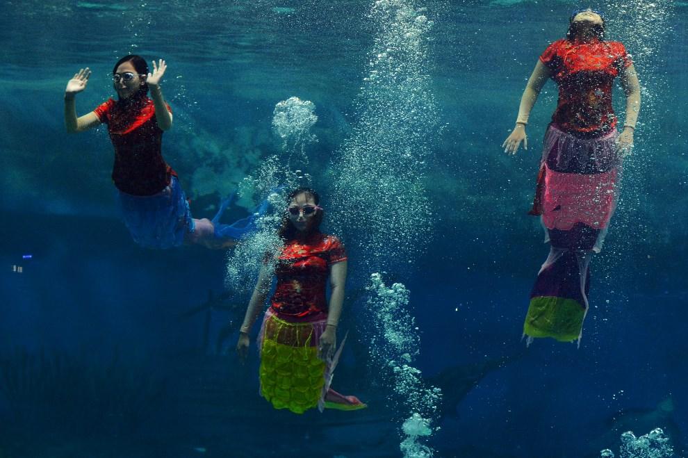 16.INDONEZJA, Dżakarta, 31 stycznia 2014: Podwodny taniec  noworoczny w parku Ancol. AFP AFP PHOTO / ROMEO GACAD