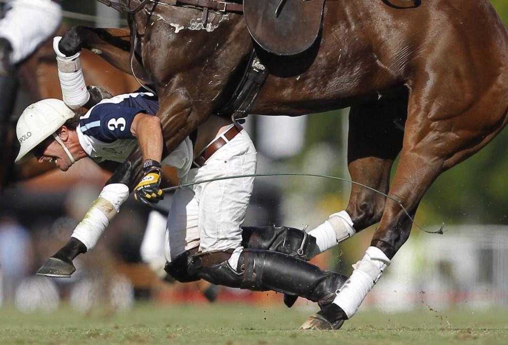19.ARGENTYNA, Buenos Aires, 1 grudnia 2013: Pablo Mac Donough spada z konia podczas meczu na Argentine Polo Open. EPA/EMILIANO LASALVIA Dostawca: PAP/EPA.