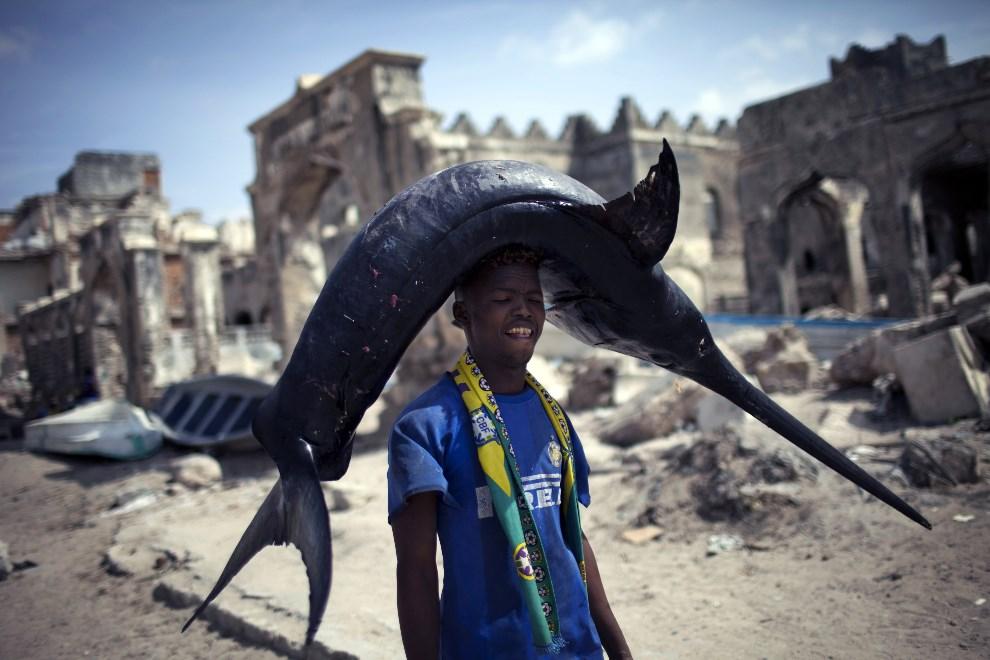 20.SOMALIA, Mogadiszu, 11 lutego 2014: Rybak ze złowionym włócznikiem. AFP PHOTO / JM LOPEZ