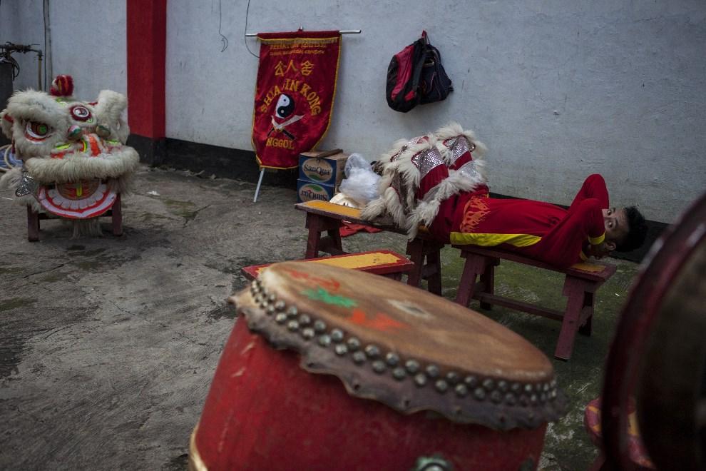 28.INDONEZJA, Dżakarta, 30 stycznia 2014: Mężczyzna występujący w stroju lwa przygotowuje się do występu. (Foto:  Oscar Siagian/Getty Images)