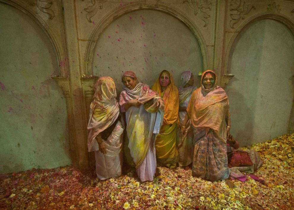 24.INDIE, Vrindavan, 14 marca 2014: Wdowy pokryte kolorowym proszkiem gulal. AFP PHOTO/Prakash SINGH