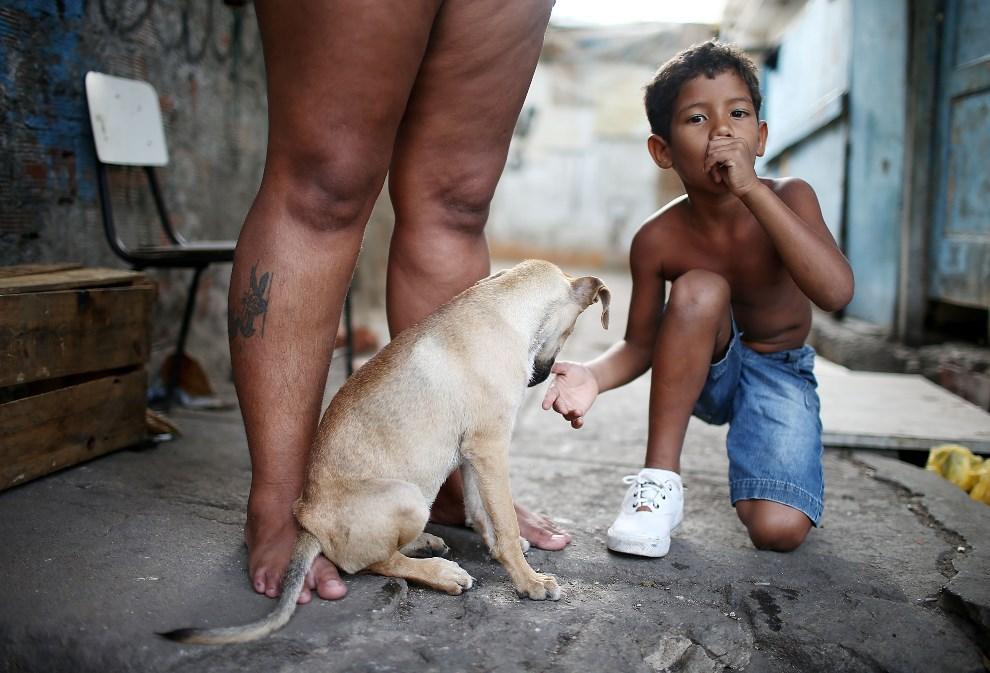 25.BRAZYLIA, Rio de Janeiro, 29 marca 2014: Joao Vitor, mieszkający w faweli  Complexo da Mare, kuca przy swoim psie. (Foto: Mario Tama/Getty Images)