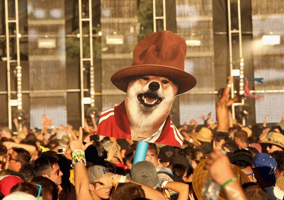 25.USA, Indio, 11 kwietnia 2014: Grupa fanów podczas pierwszego dnia festiwalu. (Foto: Mark Davis/Getty Images for Coachella)