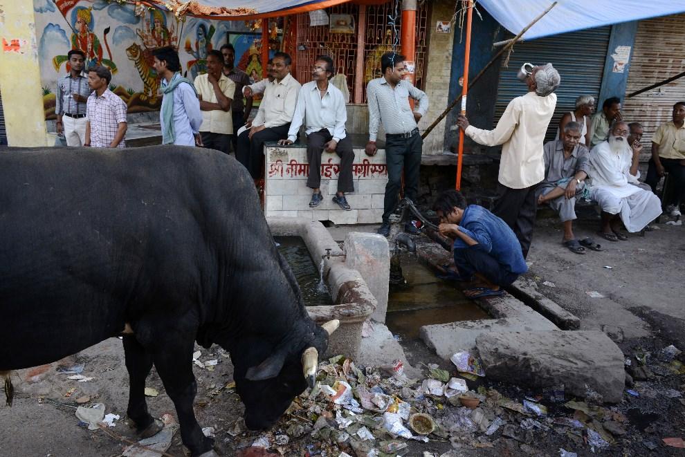 22.INDIE, Waranasi, 12 maja 2014: Mężczyźni, którzy wyszli z punktu wyborczego w pobliżu świątyni. AFP PHOTO/ROBERTO SCHMIDT