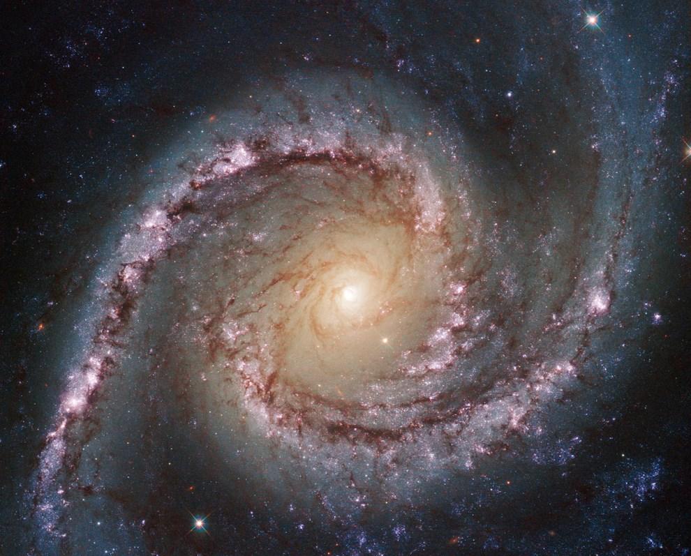 17.KOSMOS, 10 czerwca 2014: Zdjęcie wykonane przez teleskop Hubble'a przedstawiające galaktykę NGC 1566. AFP PHOTO/NASA/ESA/HUBBLE