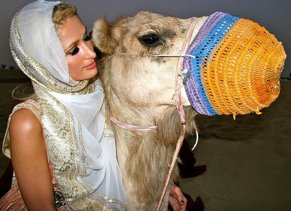 7.ZEA, Dubai, 9 czerwca 2009: Dokładnie pięć lat temu, Paris Hilton przytuliła wielbłąda. AFP PHOTO/HO