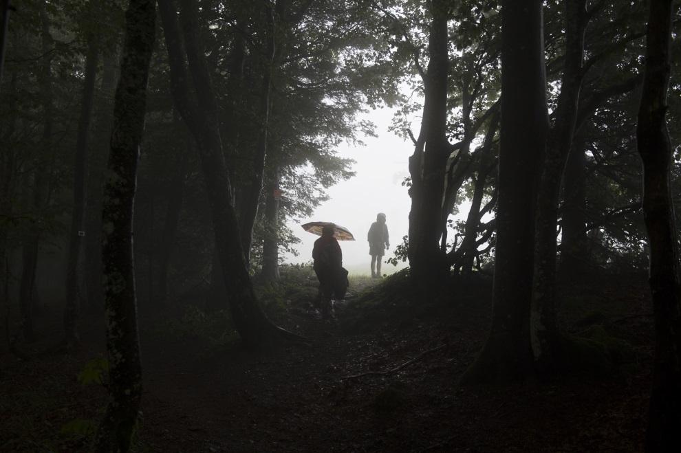 11.FRANCJA, Plancher-les-Mines, 14 lipca 2014: Kibice chroniący się w lesie przed deszczem.. AFP PHOTO / JEFF PACHOUD