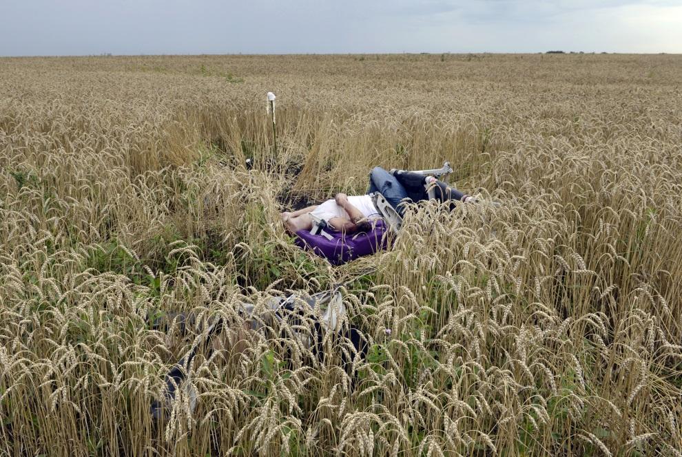 19.UKRAINA, Grabowo, 19 lipca 2014: Ciało jednej z ofiar zestrzelonego samolotu. AFP PHOTO/ ALEXANDER KHUDOTEPLY
