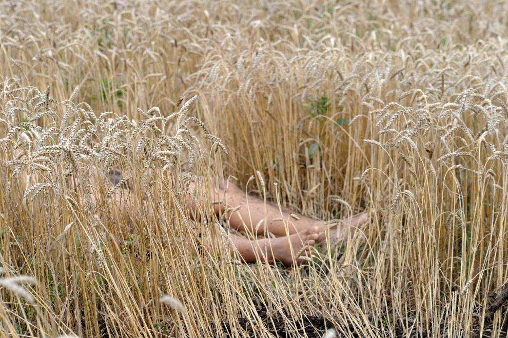 20.UKRAINA, Szachtarsk, 18 lipca 2014: Ciało jednej z ofiar zestrzelonego samolotu. AFP PHOTO/DOMINIQUE FAGET