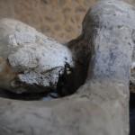 Ofiary wybuchu Wezuwiusza