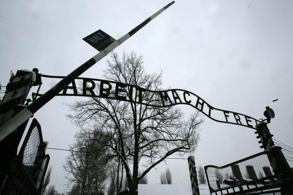 Освенцим 65 годовщина освобождения